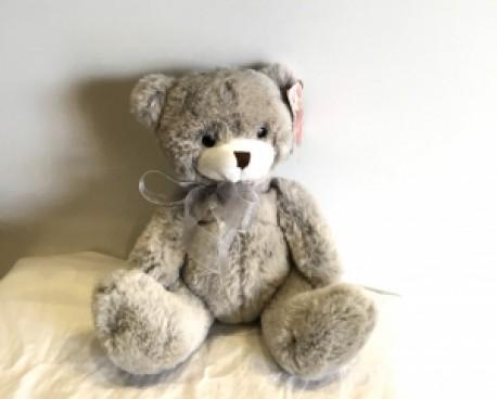 Charlotte Bear