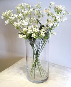 Cylinder Glass Vase 1